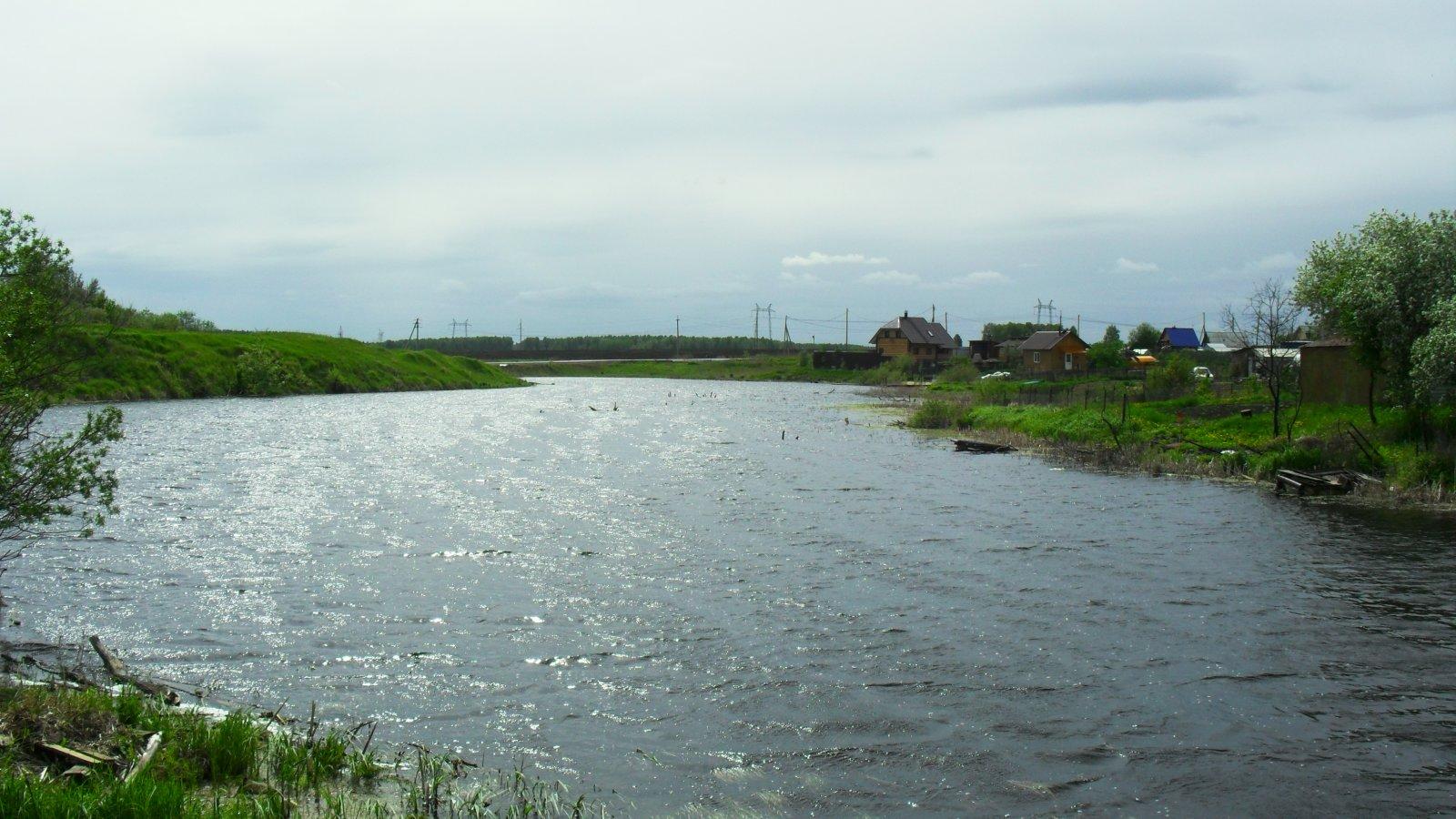 В Беловодье на пруду.JPG